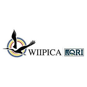 Wiipica-QRI