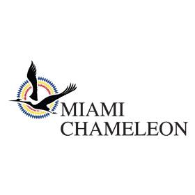 Miami-Chameleon